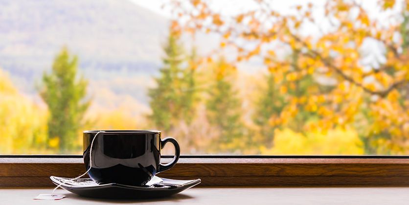 Cup of tea in front of window with autumn view