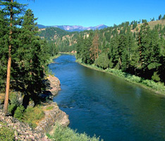Clark Fork River Project