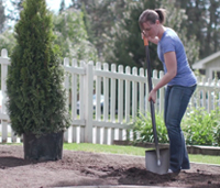 Woman digging in garden with shovel